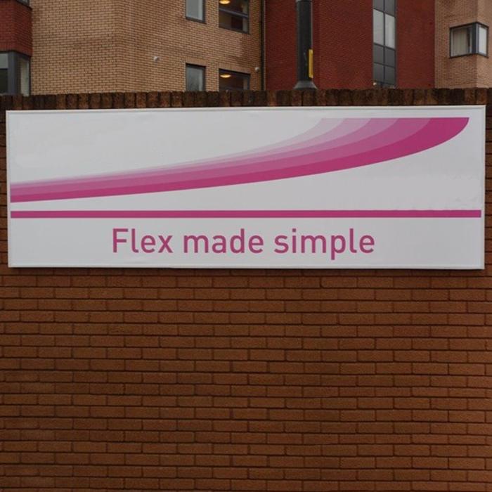 Flexi Face Example